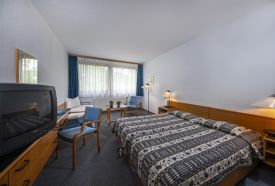 Basic szoba